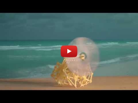 Embedded thumbnail for Art or Models? Beach Animals, The Strandbeest